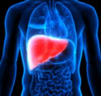 Prevention of Hepatitis B and Role of Counselling